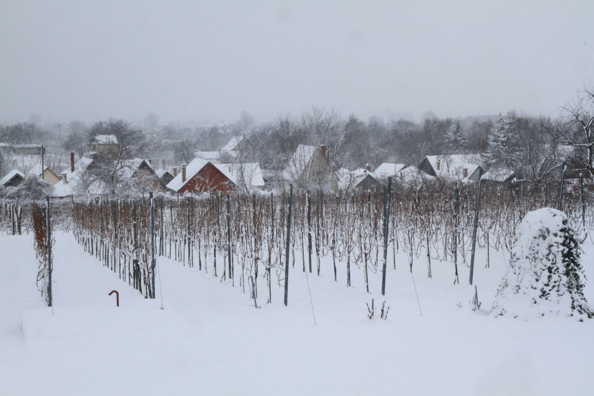 Babits Mihály: Tél a szőlőhegyen