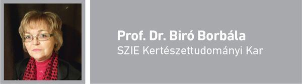 Prof. Dr. Bíró Borbála
