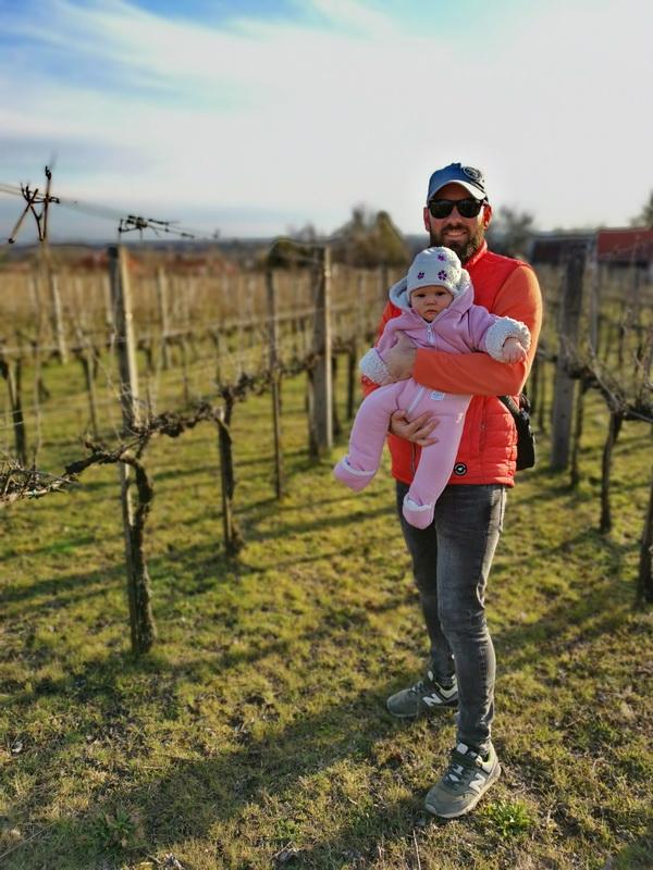 Baldavári Attila a szőlőjében
