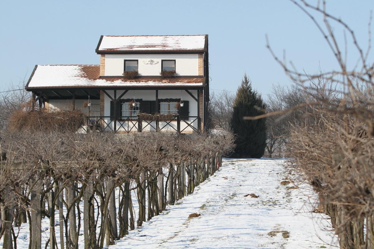 Tél a szőlőhegyen, Bodor Borház