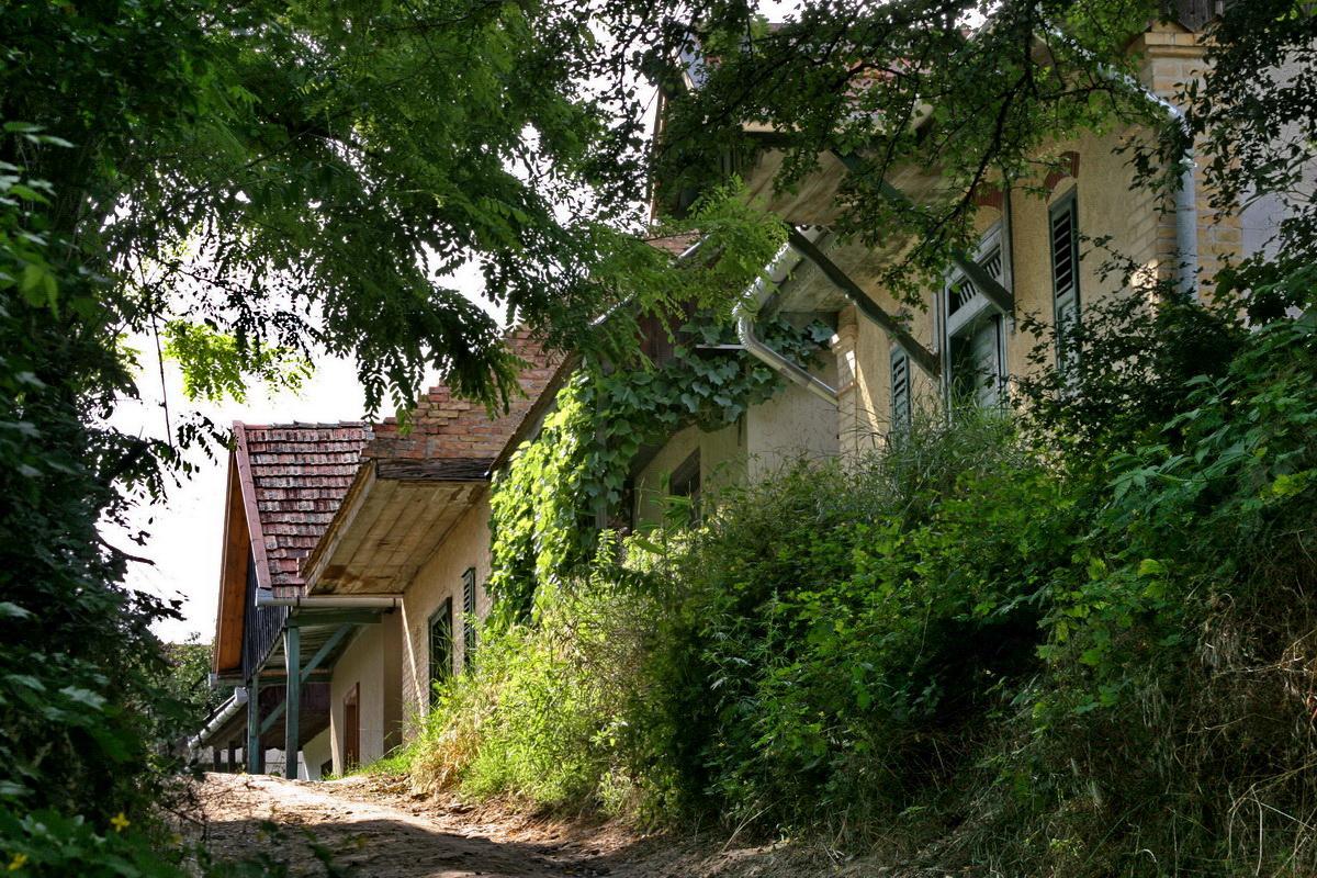 Monori Pincefalu, Mendei út - Irsai Olivér sor feljáró