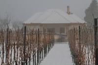Babits Mihály: Szőlőhegy télen