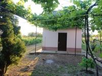 Eladó borospince szőlővel és gyümölcsfákkal rendelkező földterülettel