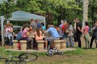 Megújuló és fejlődő Bacchus tér