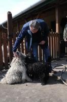 Kalandozások a magyarországi pincefalvakban