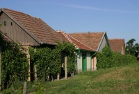 Monor Cellar Village